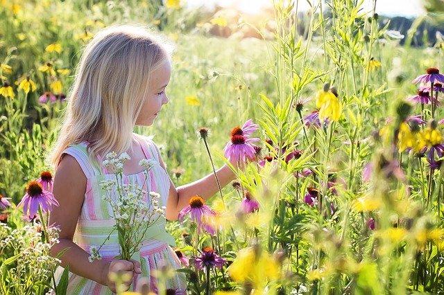 子どもの主体性を高める3つのポイント